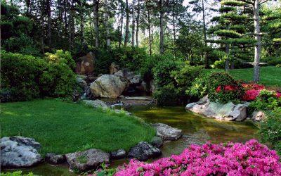 Mayo en el Jardín