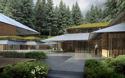 Construir un jardín minimalista