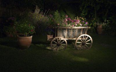 Comprar macetas y jardineras, cómo elegirlas
