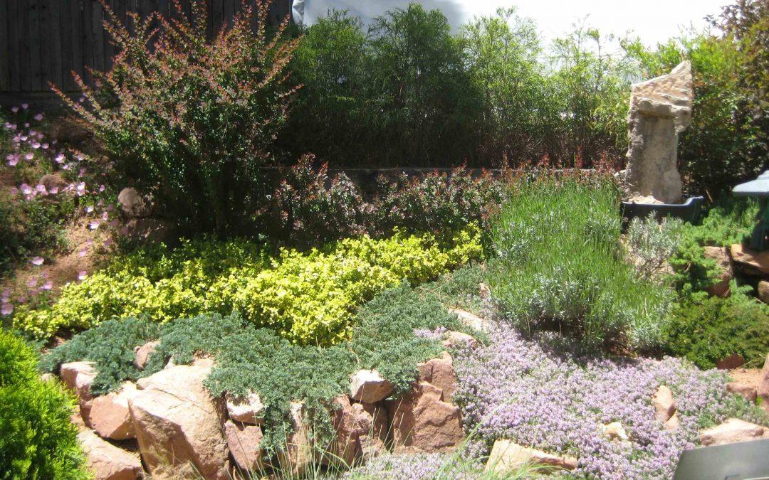 Cómo hacer una rocalla en el jardín