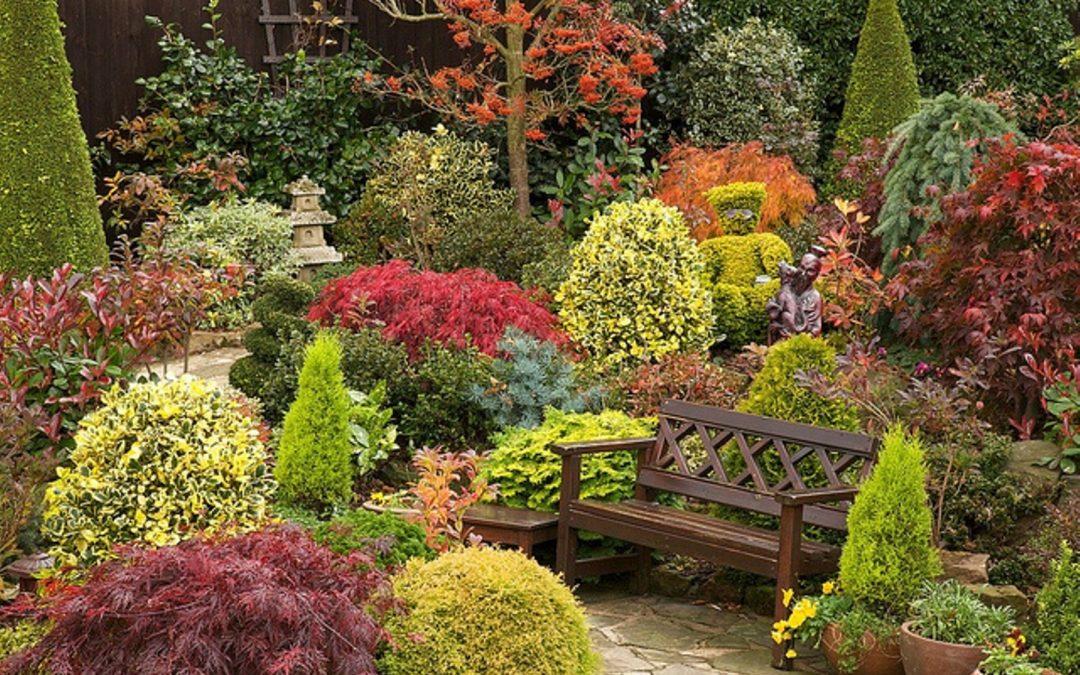 Tareas de noviembre en el jardín en el hemisferio norte