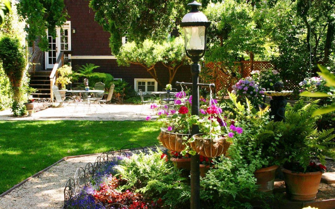 Tareas del jardín en verano
